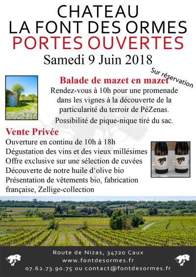 Les vins du Languedoc - Languedoc Wines